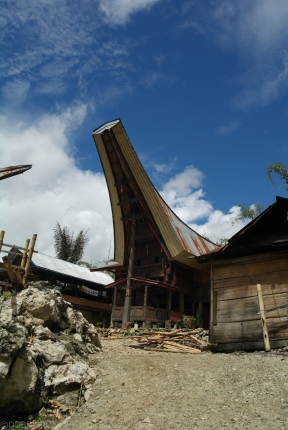 Tana Toraja Indonezja (3)